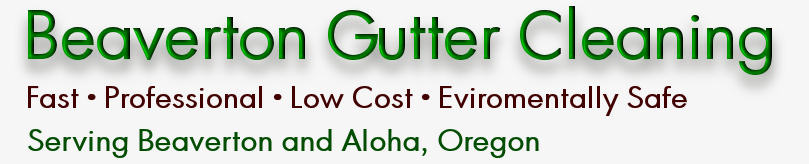 BEAVERTON GUTTER CLEANING™ (503)547-7027 ?